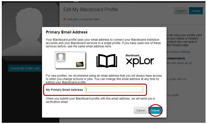 add primary email address