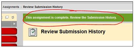 Assignment Upload Confirmation